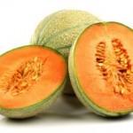 Meloen sorbet